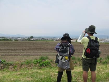 Field trip in Tenri 日本最古の道、「山の辺の道」を歩こう【約8.5km】