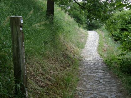 山の辺の道(南コース 16km)