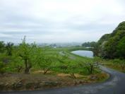奈良県 山の辺の道 ガストロノミー オンラインツアー