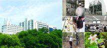 シャープ総合開発センター(天理工場)