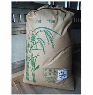 大和めぐみ米 玄米20kg